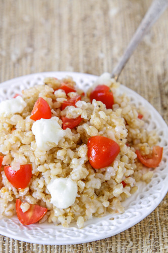 Germinated Rice wtih Tomatoes and Mozzarella